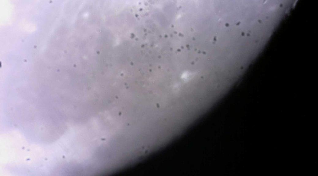 Photo de lune prise par L'Astronomie de A à Z